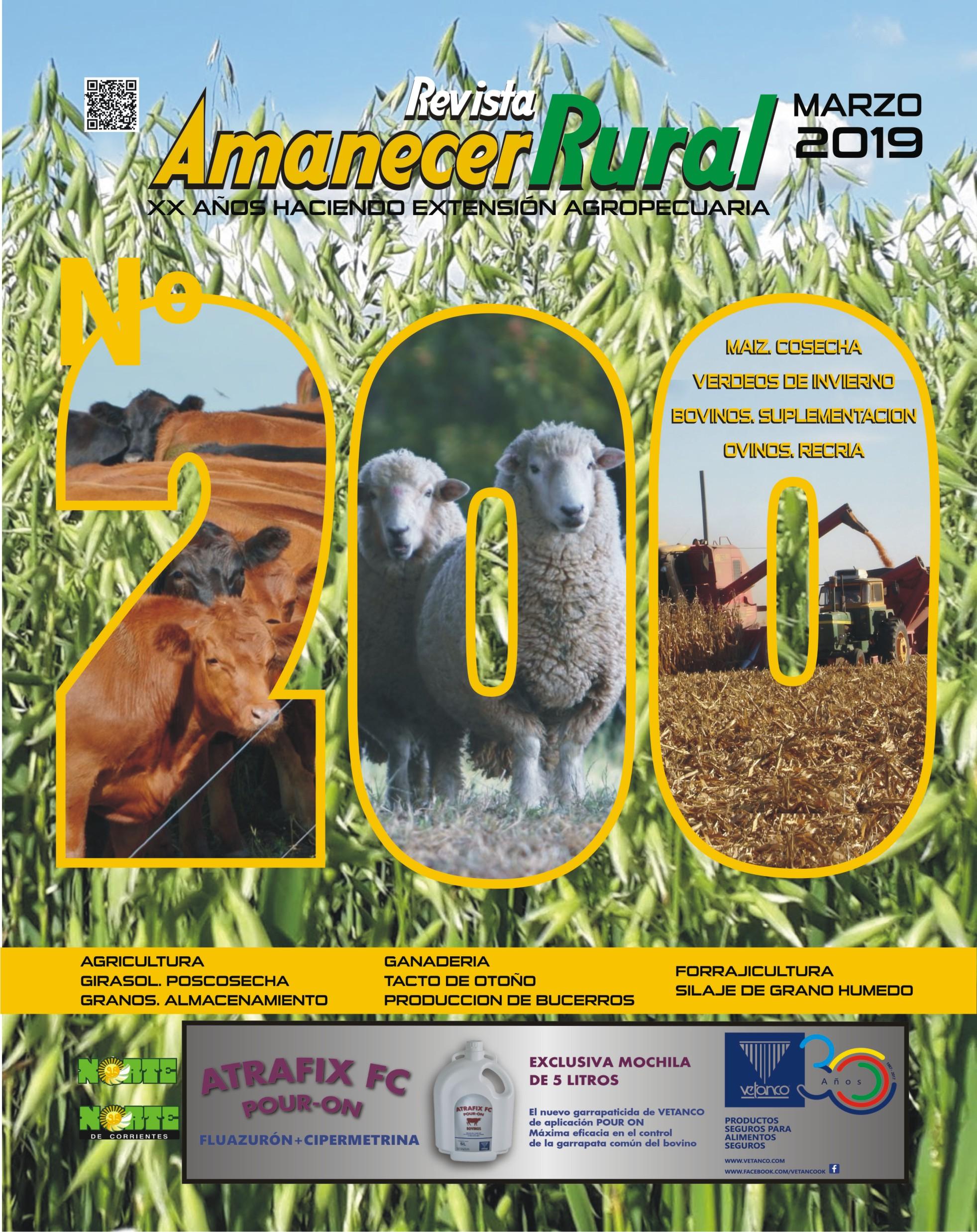 amanecer rural revista