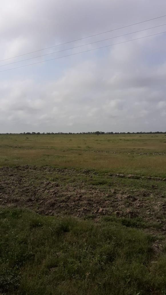 clasificados amanecer rural